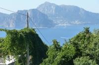 Massa Lubrense Vendesi Soluzione indipendente al grezzo vista Capri